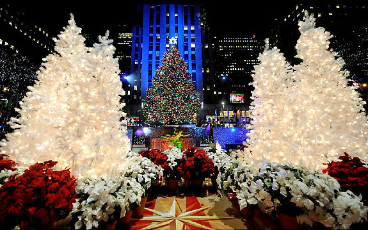 New York City Christmas Trees